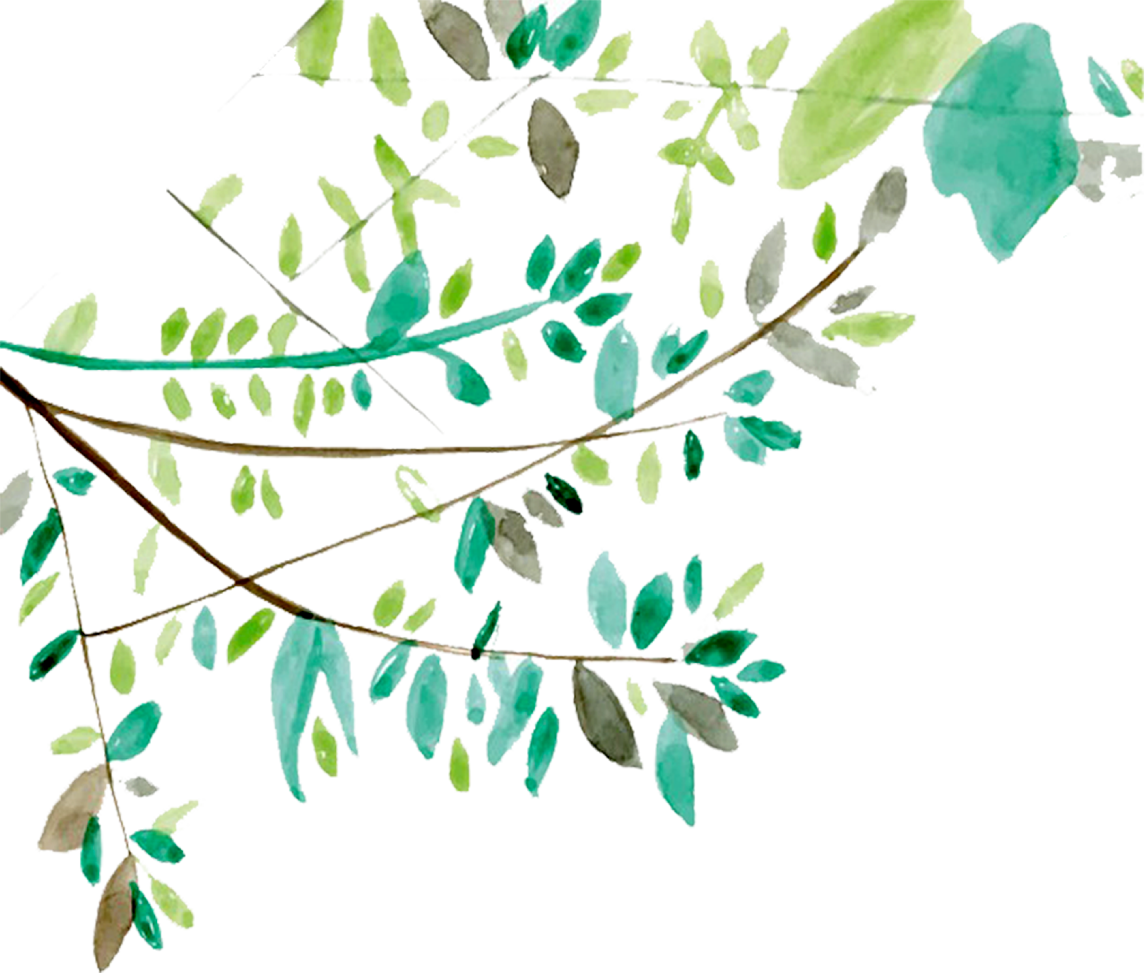 3971x3375 19 Vector Ai Tree Branch Huge Freebie! Download For Powerpoint