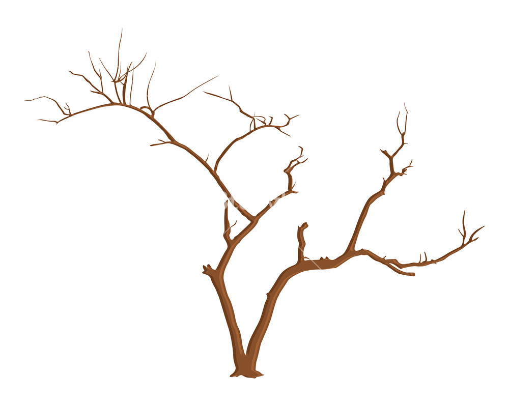 1000x798 Halloween Tree Branches Vector Royalty Free Stock Image