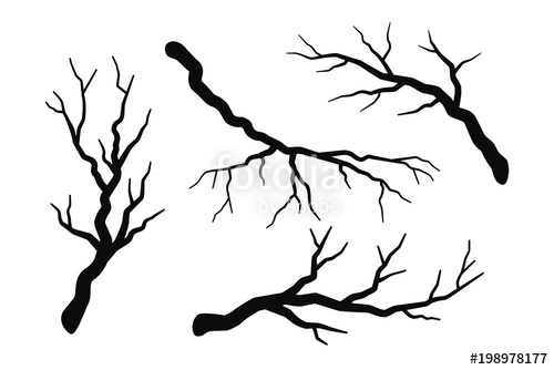 500x334 Tree Branch Without Leaves Silhouettes Set Isolated On White, Bare