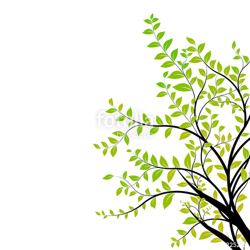 500x500 Tree Branch Vector