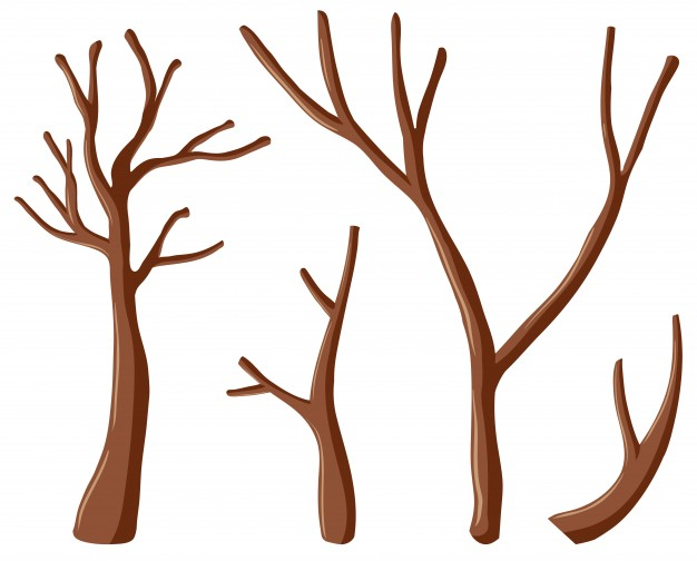 626x504 Branch Vectors, Photos And Psd Files Free Download