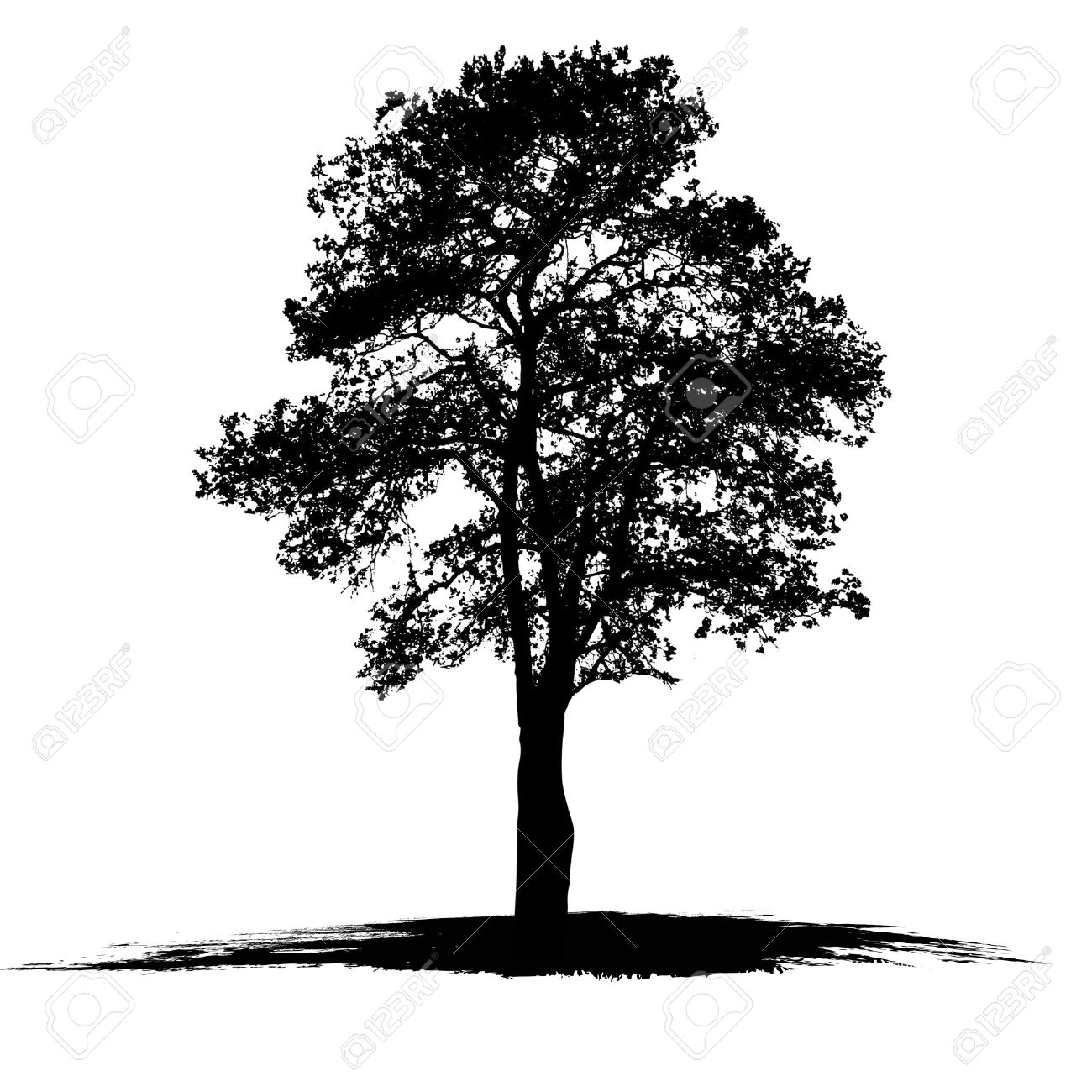 1300x1300 Collection Of Vector Tree Drawing High Quality, Free