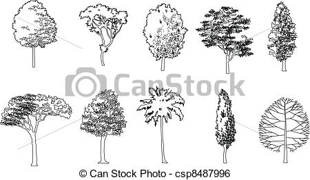 450x261 Graphic Tree, Vector Illustration. Tree Drawing Line , Eps10.
