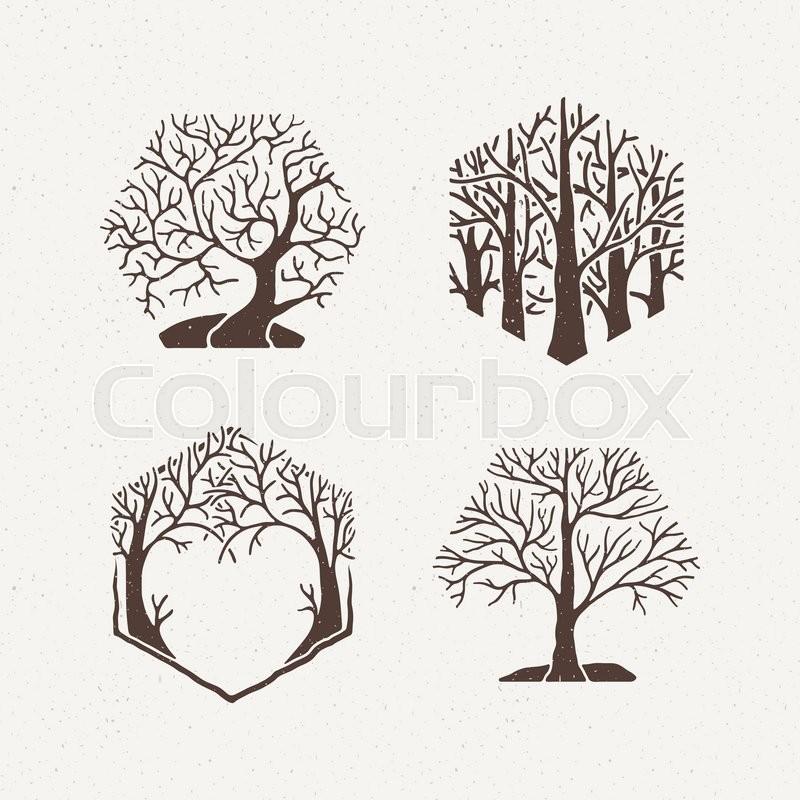 800x800 Hexagon Trees Set. Vector Illustration. Pattern Geometric Figure