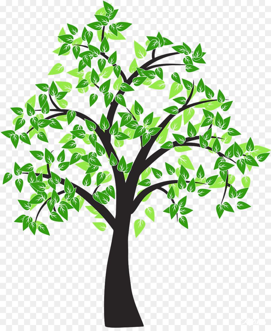 900x1100 Tree Drawing Cottonwood Leaf