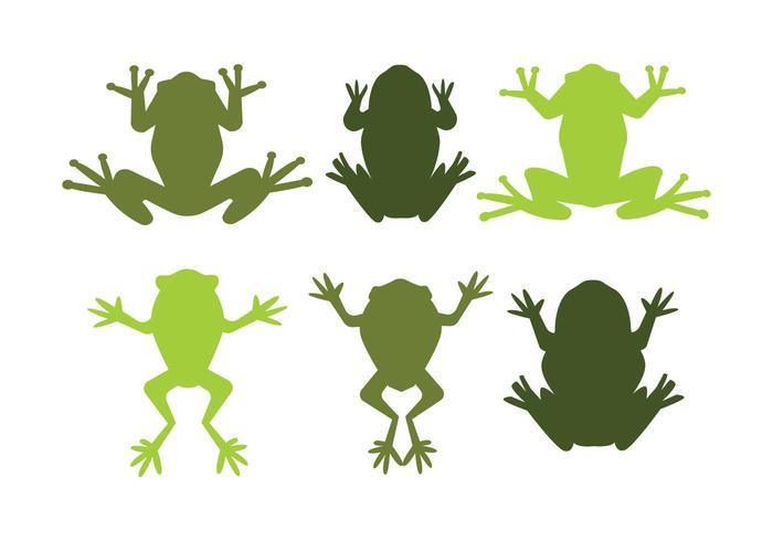 700x490 Green Tree Frog Vectors