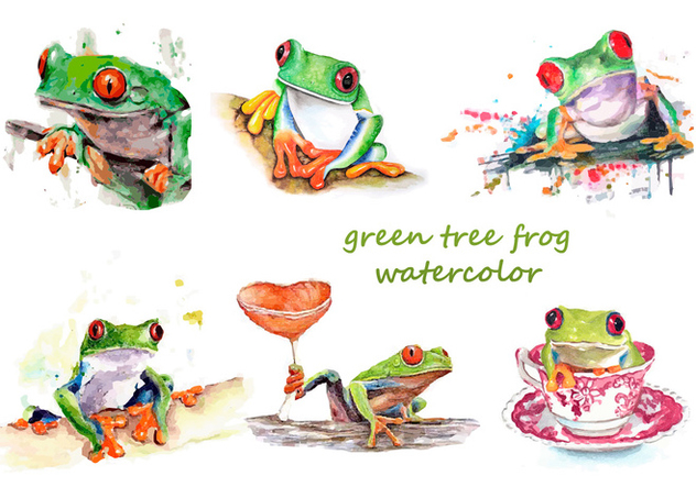 632x443 Green Tree Frog Watercolor Free Vector Download 330025 Cannypic