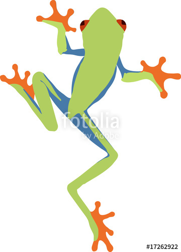 360x500 Red Eyed Tree Frog Stock Image And Royalty Free Vector Files On