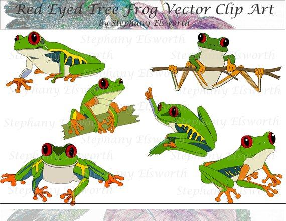 570x440 Red Eyed Tree Frog Vector Clip Art Etsy