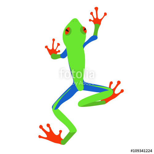 500x500 Red Eyed Tree Frog, Flat Design. Vector Illustration Of Red Eyed
