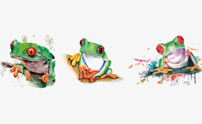 650x400 Vector Red Eye Frog, Eye Vector, Frog Vector, Frog Clipart Png And