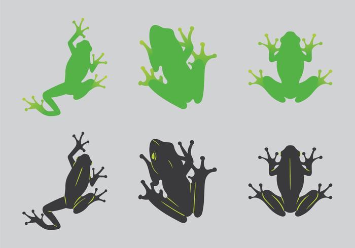 700x490 Free Green Tree Frog Vector Illustration