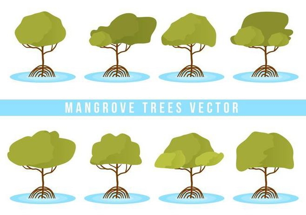 632x443 Free Mangrove Trees Vector Free Vector Download 406717 Cannypic