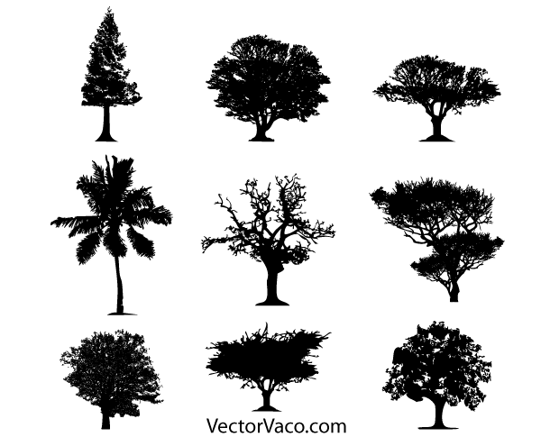600x485 Free Tree Silhouette Vector Free Download Psd Files, Vectors