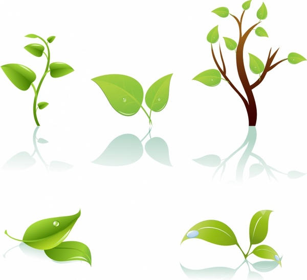 600x548 Green Tree And Leaf Free Vector In Adobe Illustrator Ai ( .ai