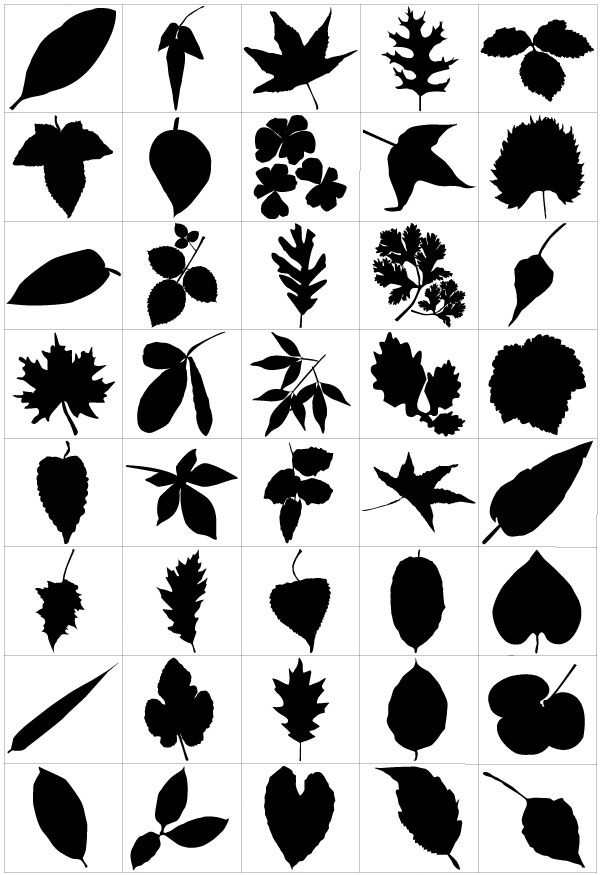 600x875 Free Graphics Lush Vector Trees And Summer Leaves