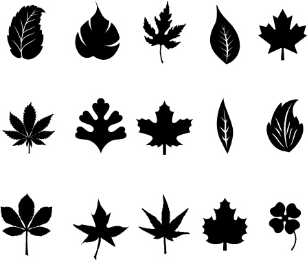 447x378 Black Leaves Vector Free Vector 4vector