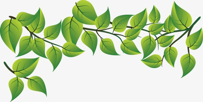 650x328 Fashion Fresh Green Leaves Vector, Leaf Material, Creative Green
