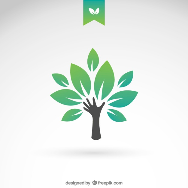 626x626 Tree Vectors, Photos And Psd Files Free Download