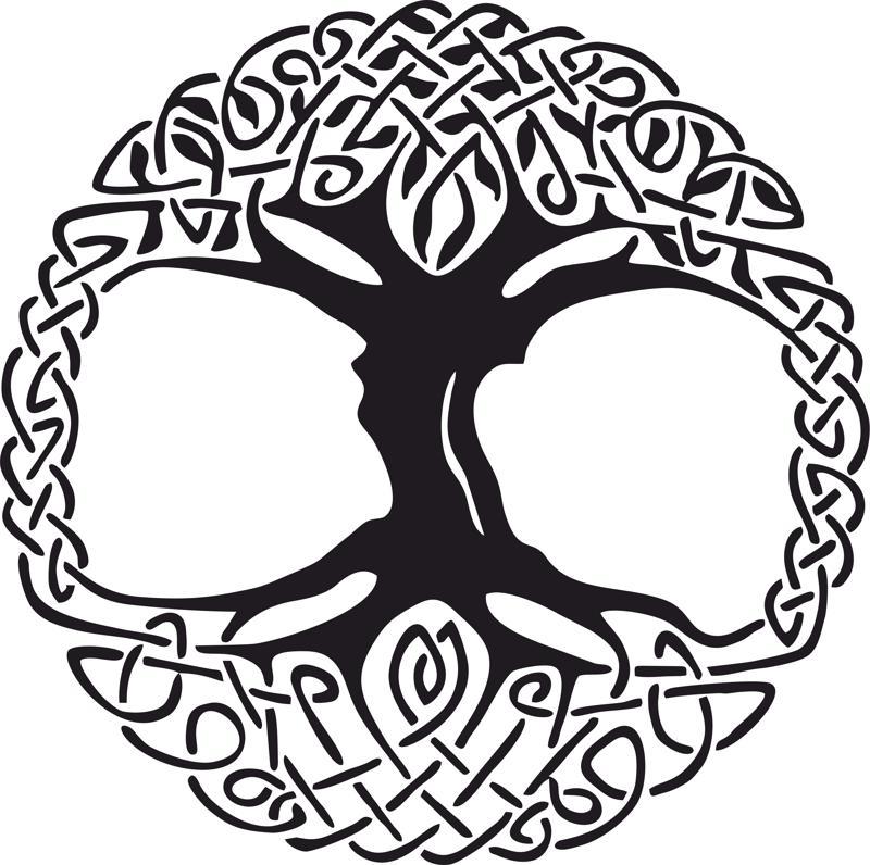 800x796 Celtic Tree Of Life Vinyl Window Sticker Vector Free Vector