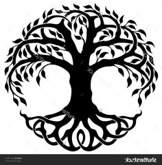 236x240 Vector Ornament, Decorative Celtic Tree Of Life Arbres