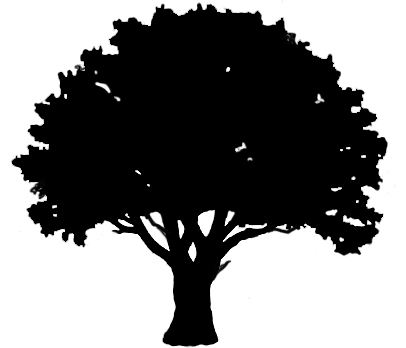 406x348 Oak Tree Outline Clipart