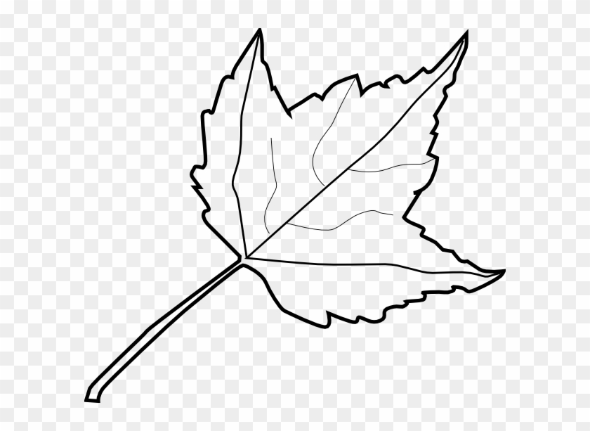840x613 Tree Outline Coloring Book Maple Leaf Clip Art At Vector