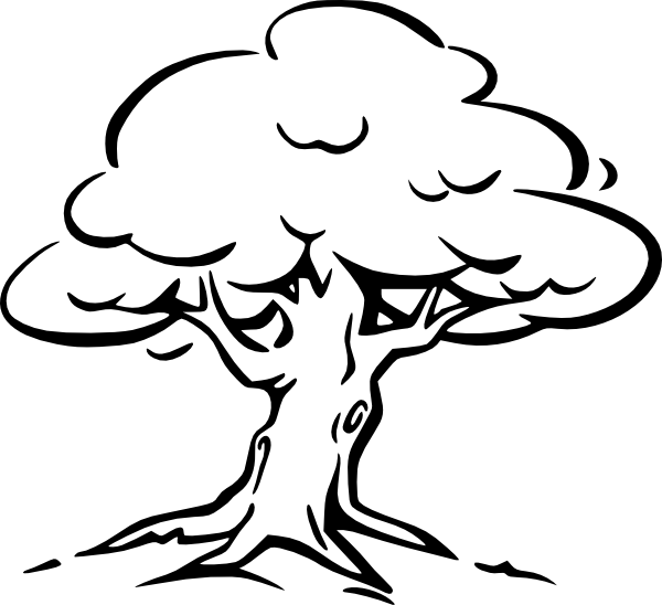 600x548 Tree Outline Clip Art Free Vector 4vector