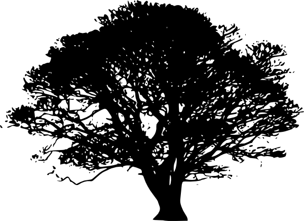600x436 Tree Silhouettes Clip Art
