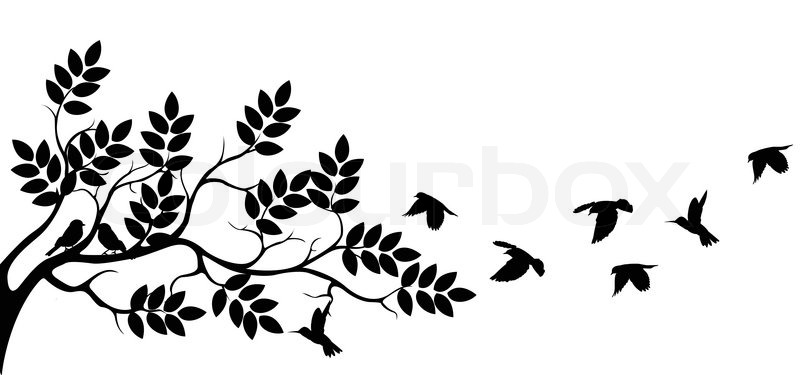 800x375 Vector Illustration Of Tree Silhouette With Birds Flying Stock