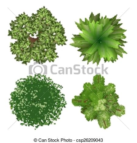 450x470 Top View Trees. Top View Tree Elements For Landscape Design On
