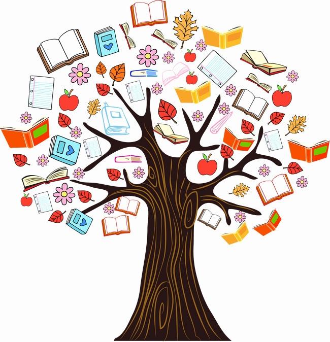 650x674 Tree Plan Png Free Download Elegant Color Book Knowledge Tree