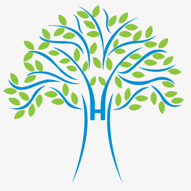 650x651 Tree Vector, Tree Clipart, Tree Diagram, Trees Png Image And