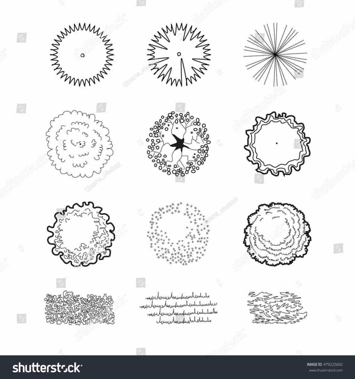 1185x1264 Vector Rhfreeescortpostcom Garden Landscape Design Plant Symbols
