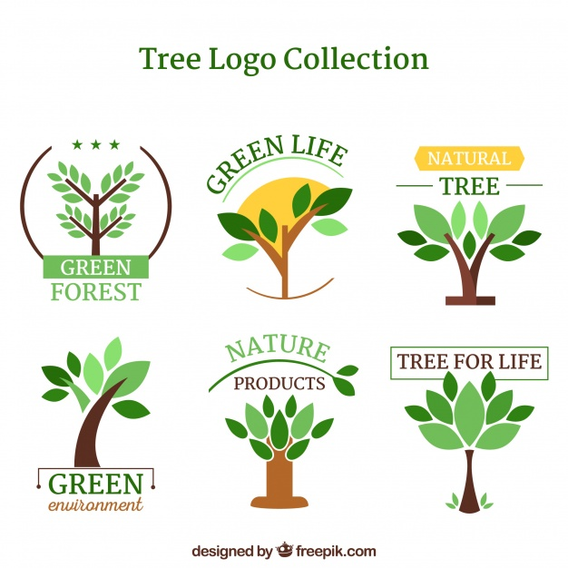 Tree Plan Vector Free Download at GetDrawings com | Free for
