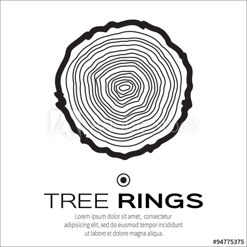 500x500 Tree Rings Background And Saw Cut Tree Trunk Vector, Forestry And