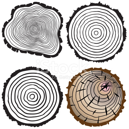 440x440 Vector Tree Rings Background And Saw Cut Tree Trunk Stock Vector