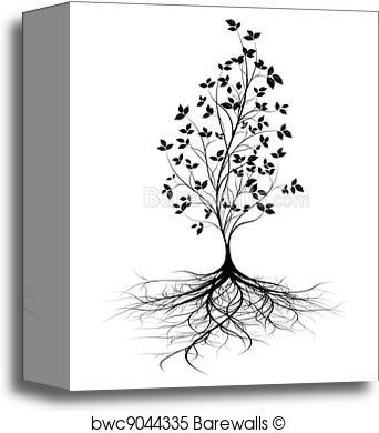 342x390 Canvas Print Of Young Tree Roots, Vector Background Barewalls