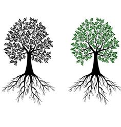 Tree Roots Vector Free