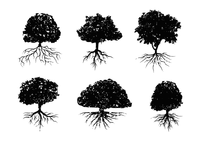 700x490 Distressed Tree With Roots Vector