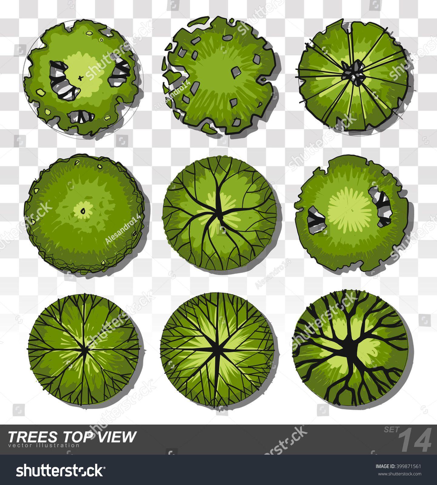 1442x1600 Set Of Trees Top View For Landscape Design Vector Illustration