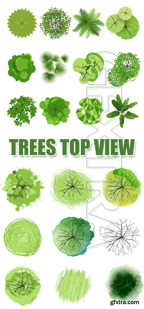 500x1070 Green Trees Top View Vector Gfxtra