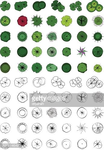 345x498 Landscape Design Symbols, Trees Top View, Vector Stock Vectors