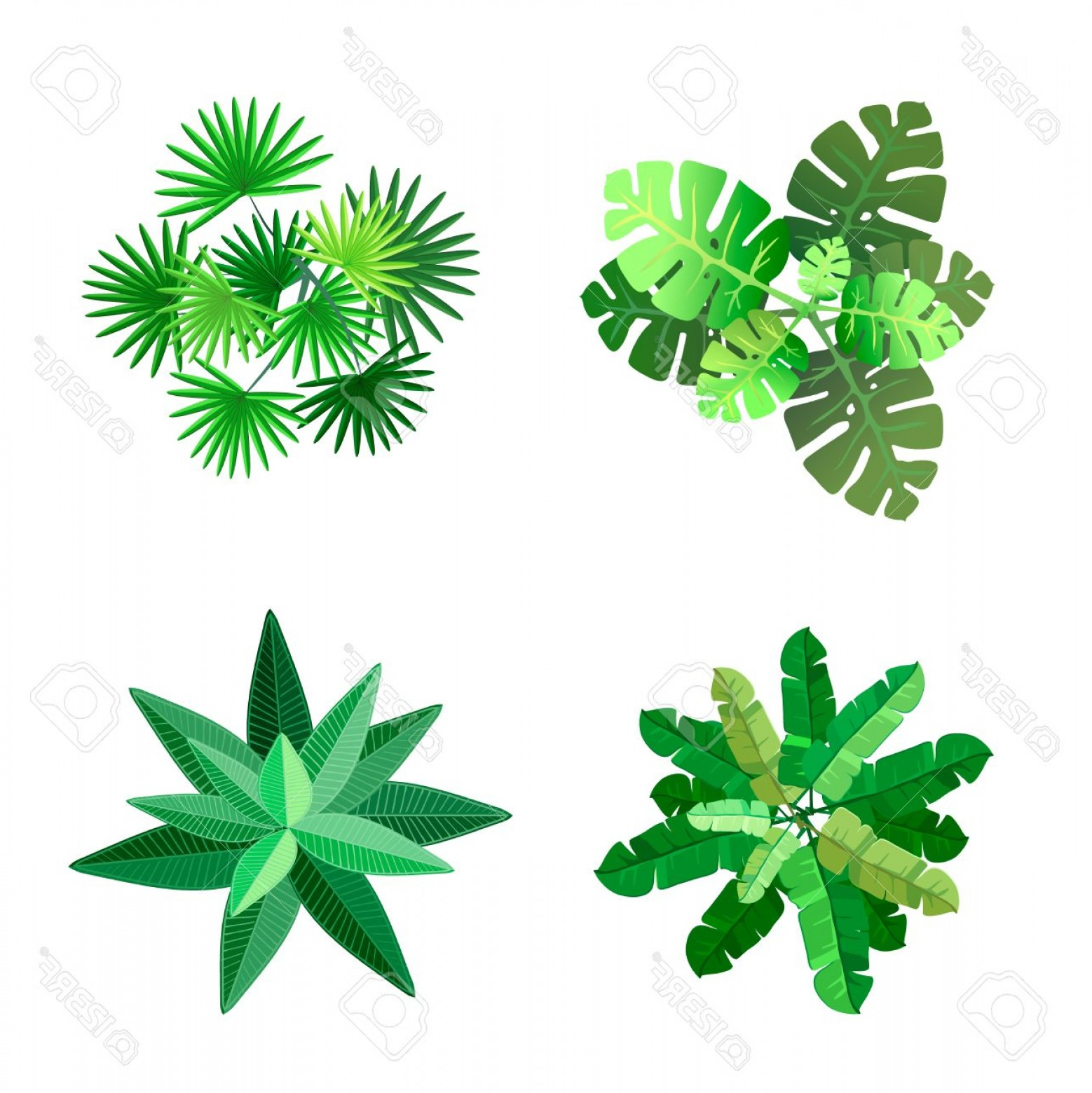 1558x1560 Photostock Vector Trees Top View For Landscape Vector Illustration