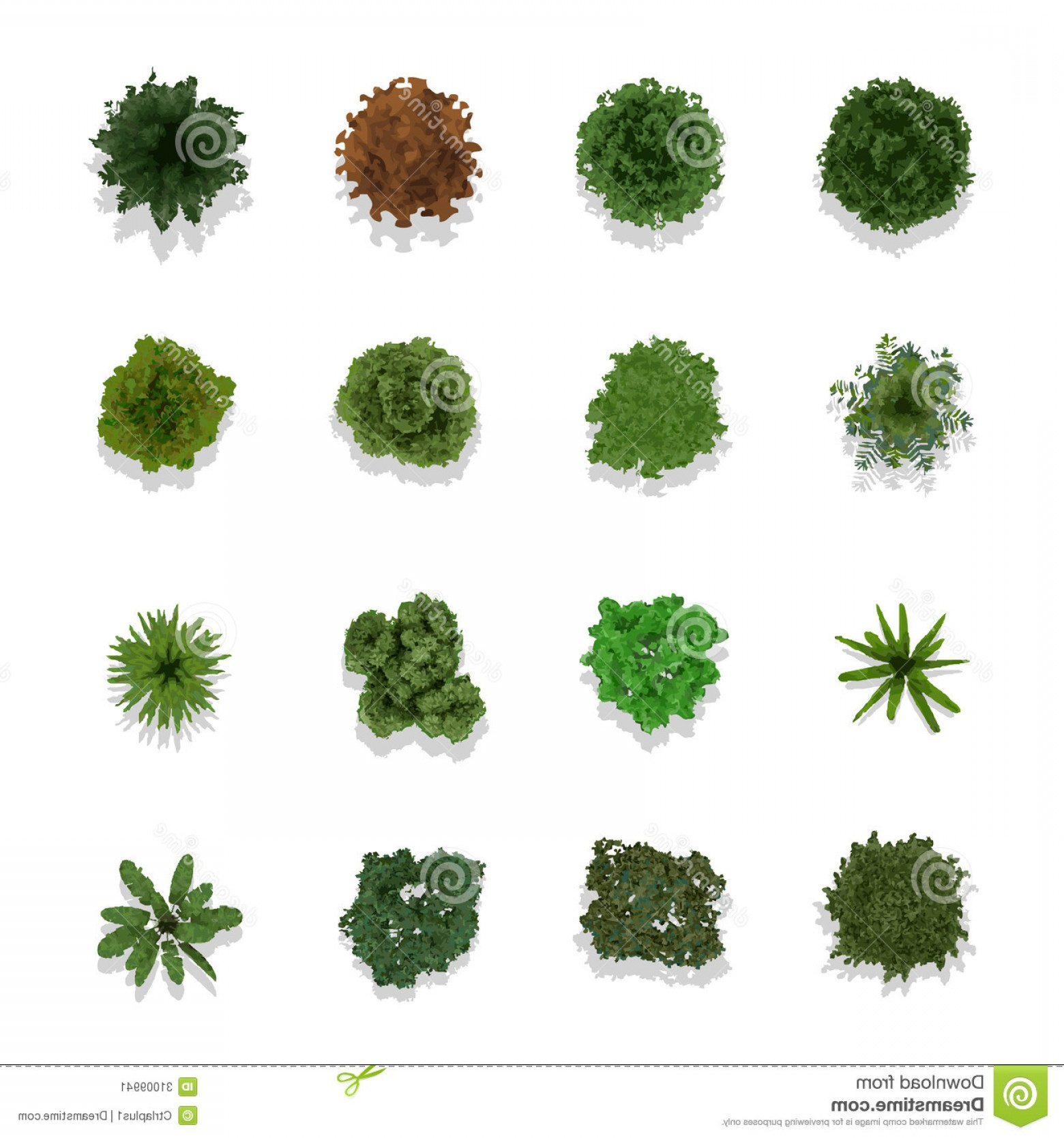 1560x1668 Stock Image Trees Top View Landscape Vector Illustration Image