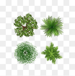 260x261 Top View Png Images Vectors And Psd Files Free Download On Pngtree