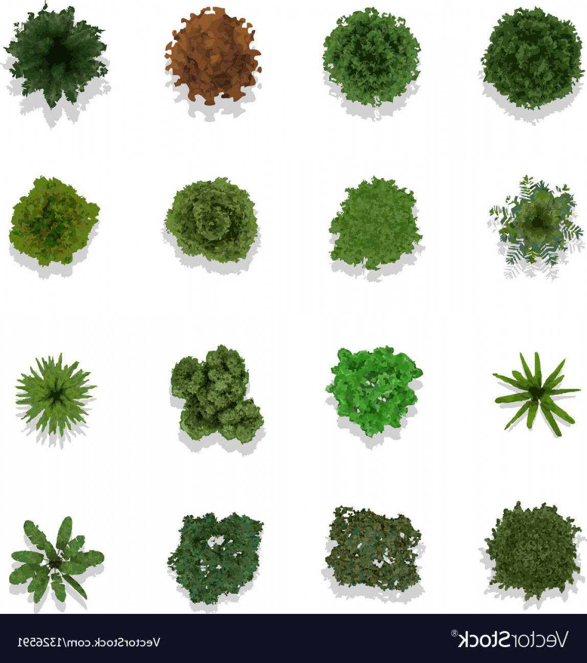 1147x1296 Trees Top View For Landscape Vector Shopatcloth