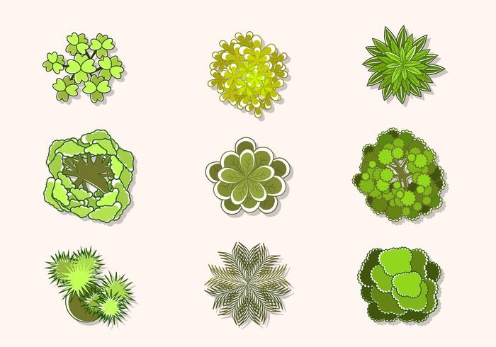 700x490 Free Tree Vector Art Gallery Images)