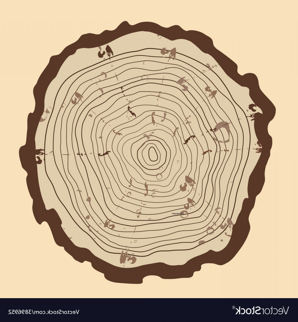1200x1296 Tree Rings And Saw Cut Tree Trunk Vector Arenawp