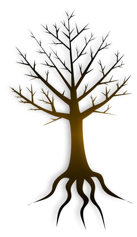 464x800 Tree Trunk Free Vector 4vector